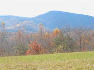 Blue Ridge_fall