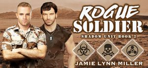 rogue-soldier-banner-small
